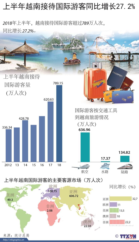 图表新闻:上半年越南接待国际游客量同比猛增 hinh anh 1