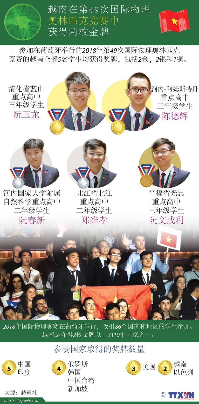 图表新闻:越南在第49次国际物理 奥林匹克竞赛中获得两枚金牌 hinh anh 1