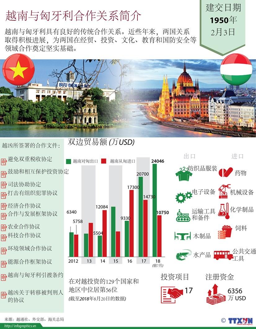 图表新闻:越南与匈牙利合作关系简介 hinh anh 1