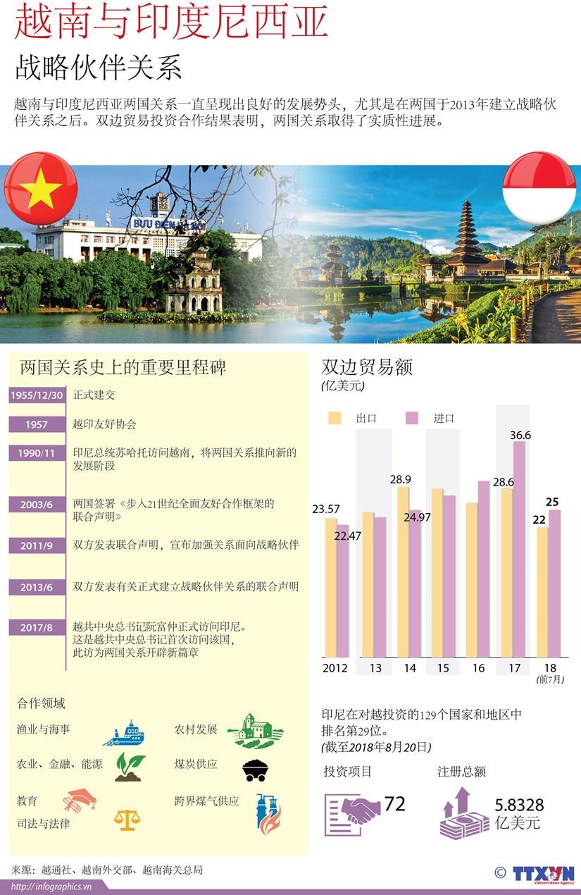 图表新闻:越南与印度尼西亚战略伙伴关系 hinh anh 1