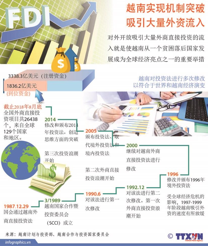 图表新闻:越南实现机制突破 吸引大量外资流入 hinh anh 1