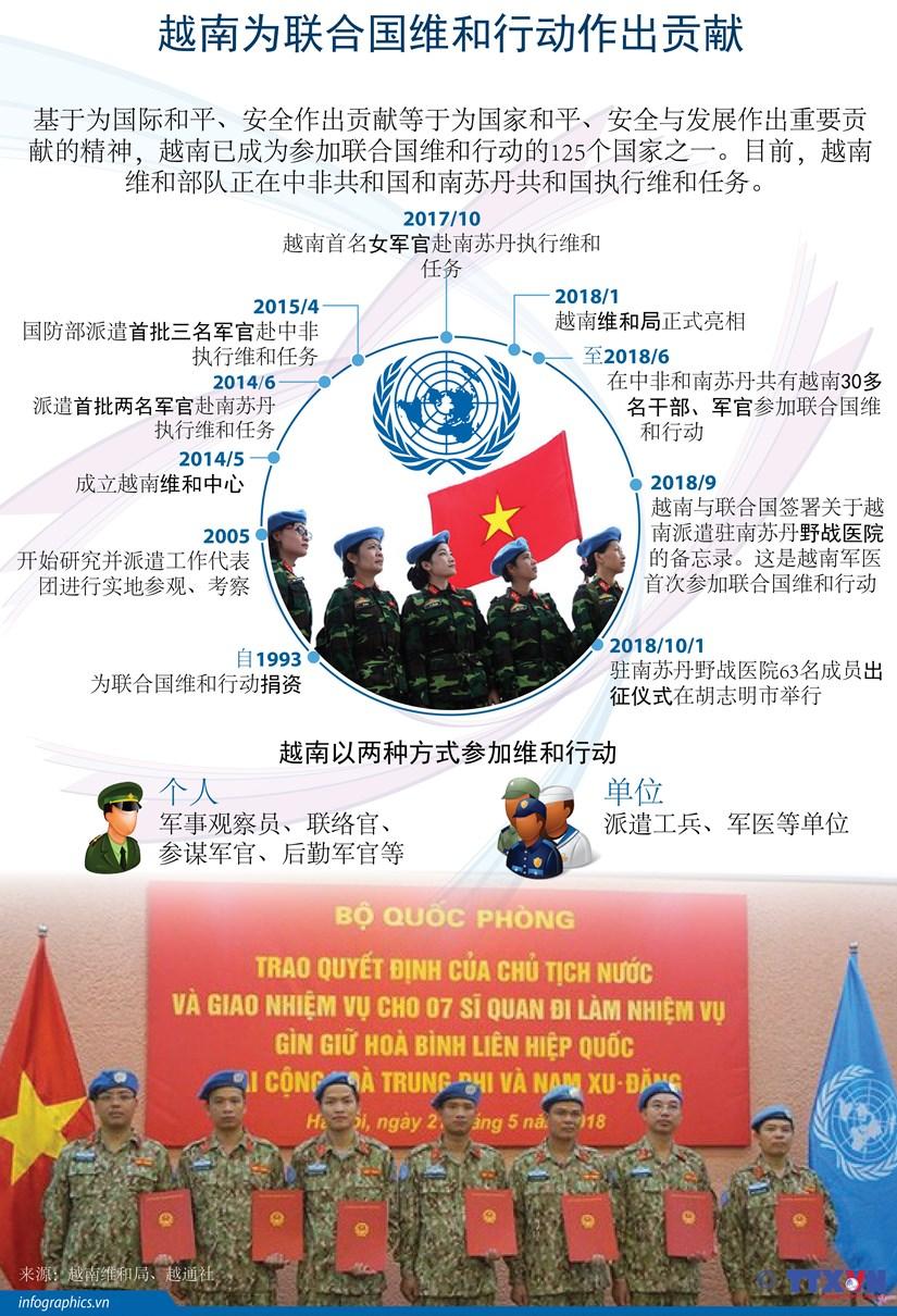 图表新闻:越南为联合国维和行动作出贡献 hinh anh 1