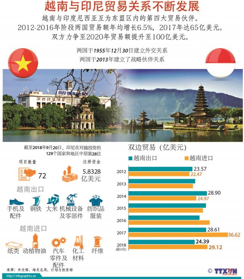 图表新闻:越南与印尼贸易关系不断发展 hinh anh 1
