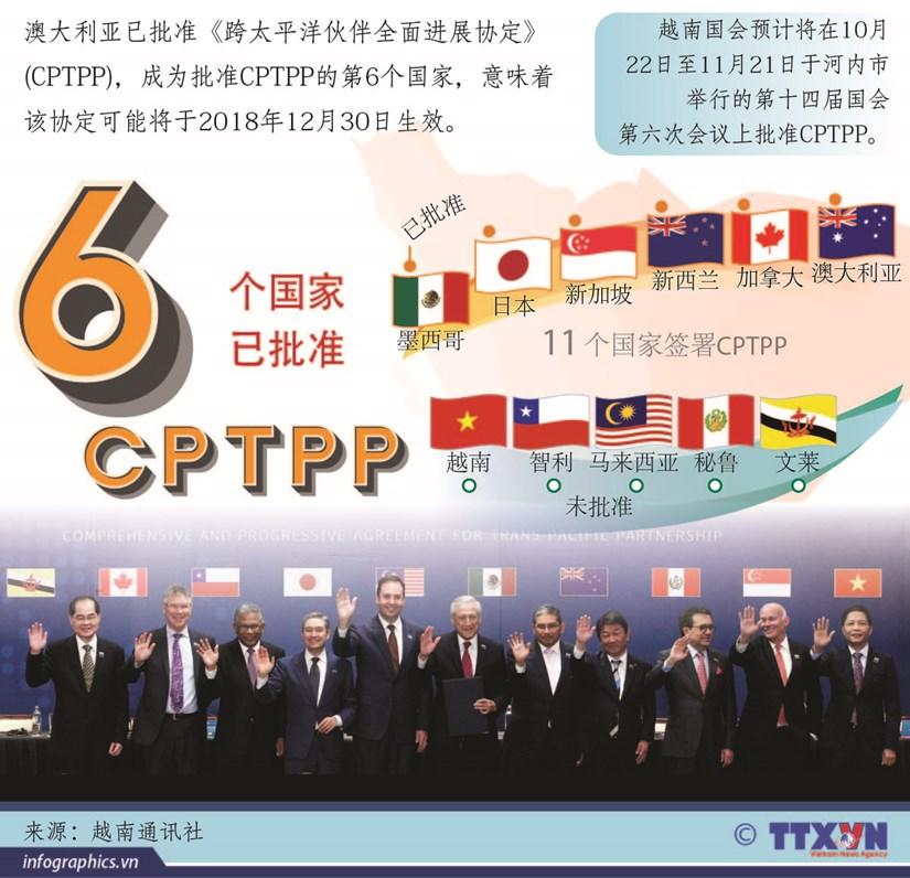 图表新闻:CPTPP将于2018年年底生效 hinh anh 1