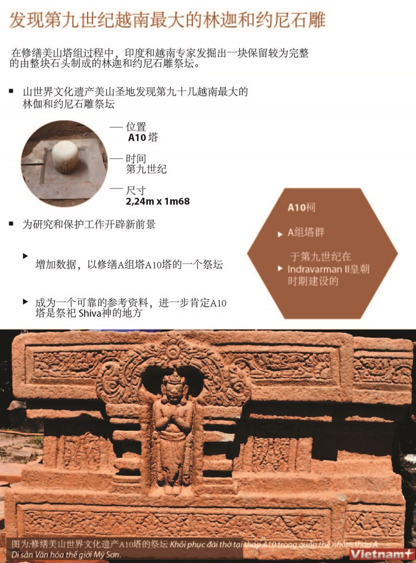 图表新闻:发现第九世纪越南最大的林伽和约尼石雕 hinh anh 1