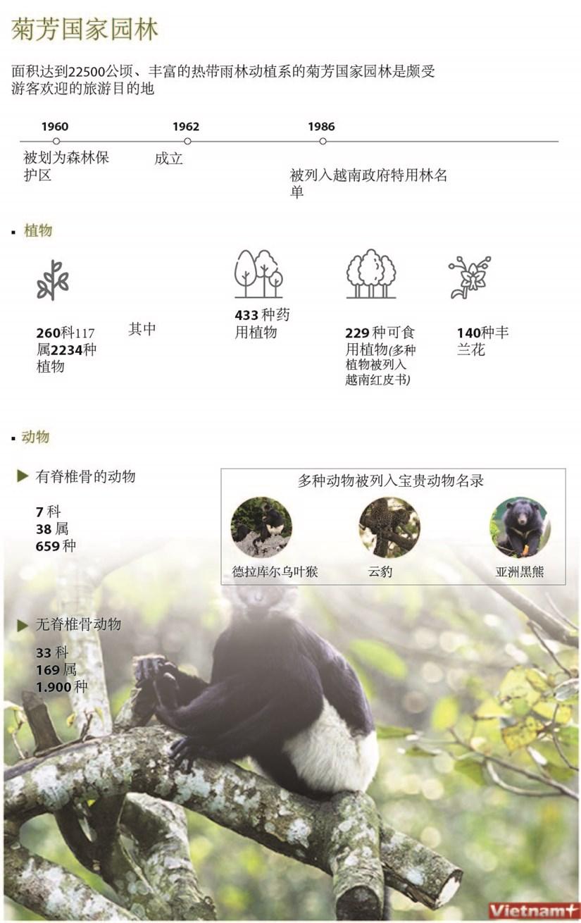 图表新闻:菊芳国家园林 hinh anh 1