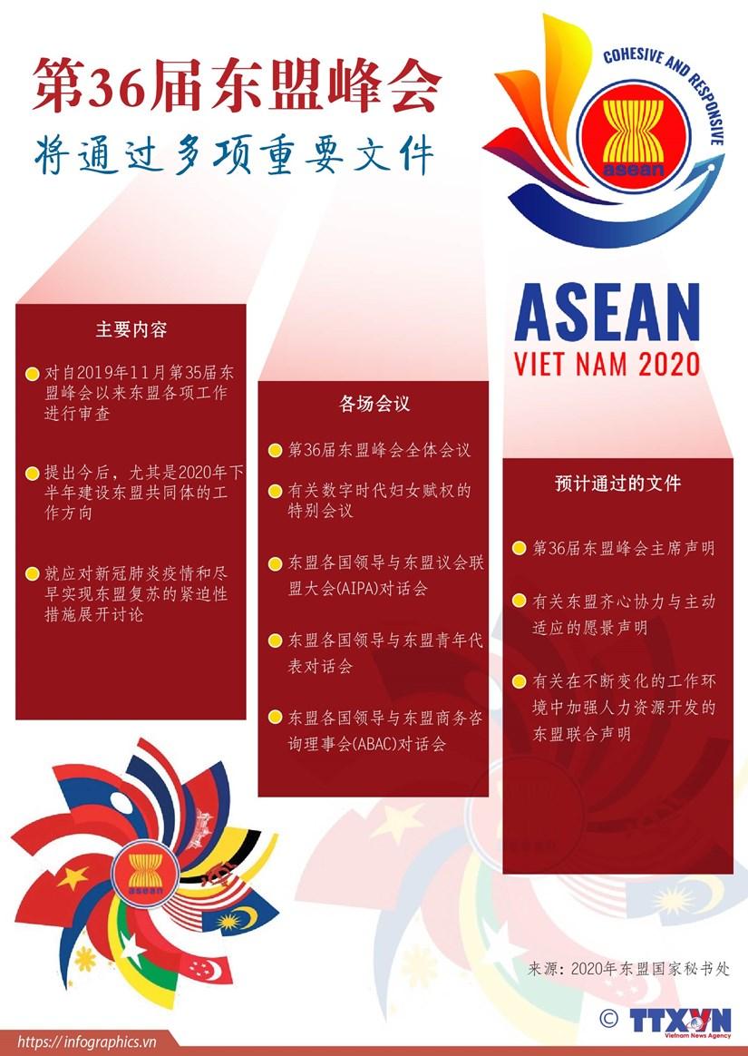 图表新闻:第36届东盟峰会将通过多项重要文件 hinh anh 1