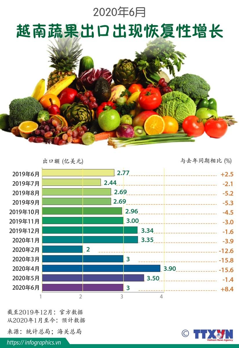 图表新闻:2020年6月越南蔬果出口出现恢复性增长 hinh anh 1