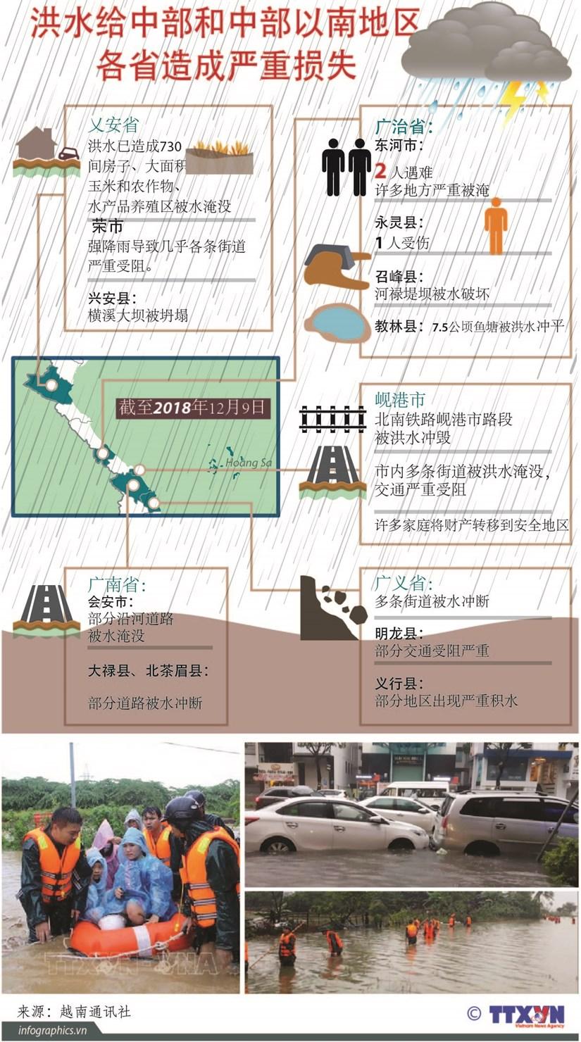 图表新闻:洪水给中部和中部以南地区各省造成严重损失 hinh anh 1