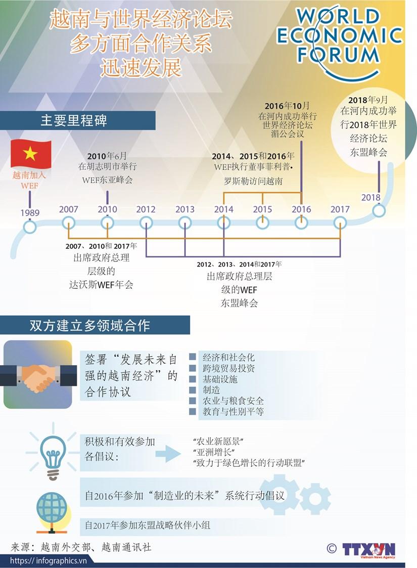 图表新闻:越南与世界经济论坛多方面合作关系迅速发展 hinh anh 1