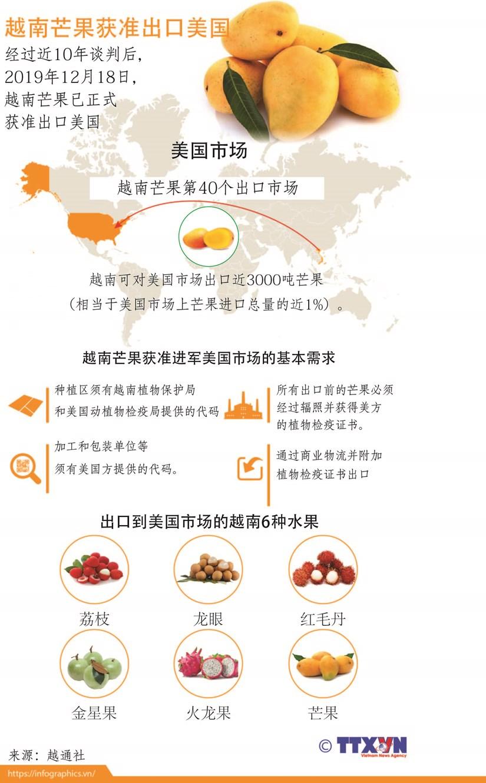 图表新闻:越南芒果获准出口美国 hinh anh 1