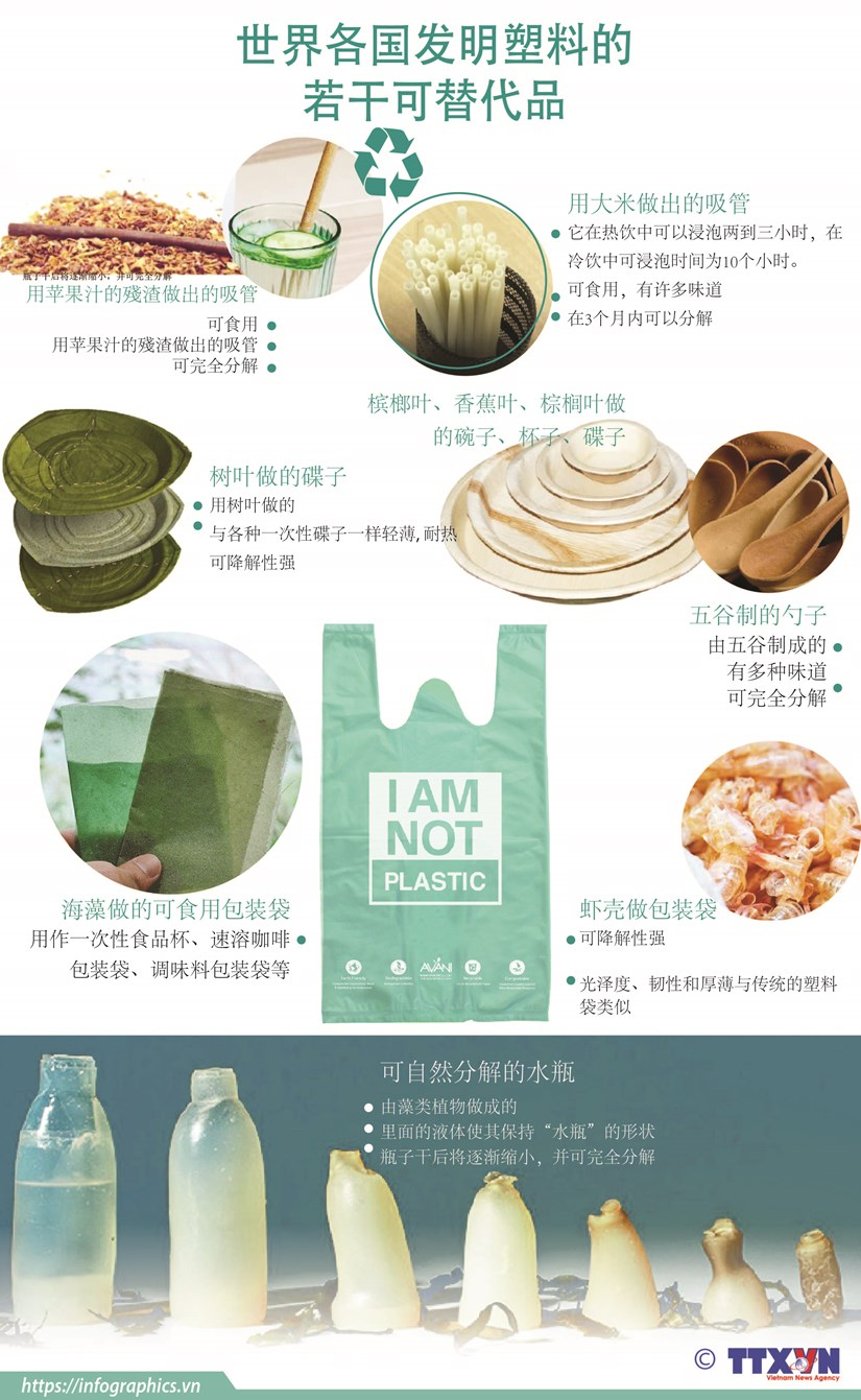 图表新闻:世界各国发明塑料的若干可替代品 hinh anh 1