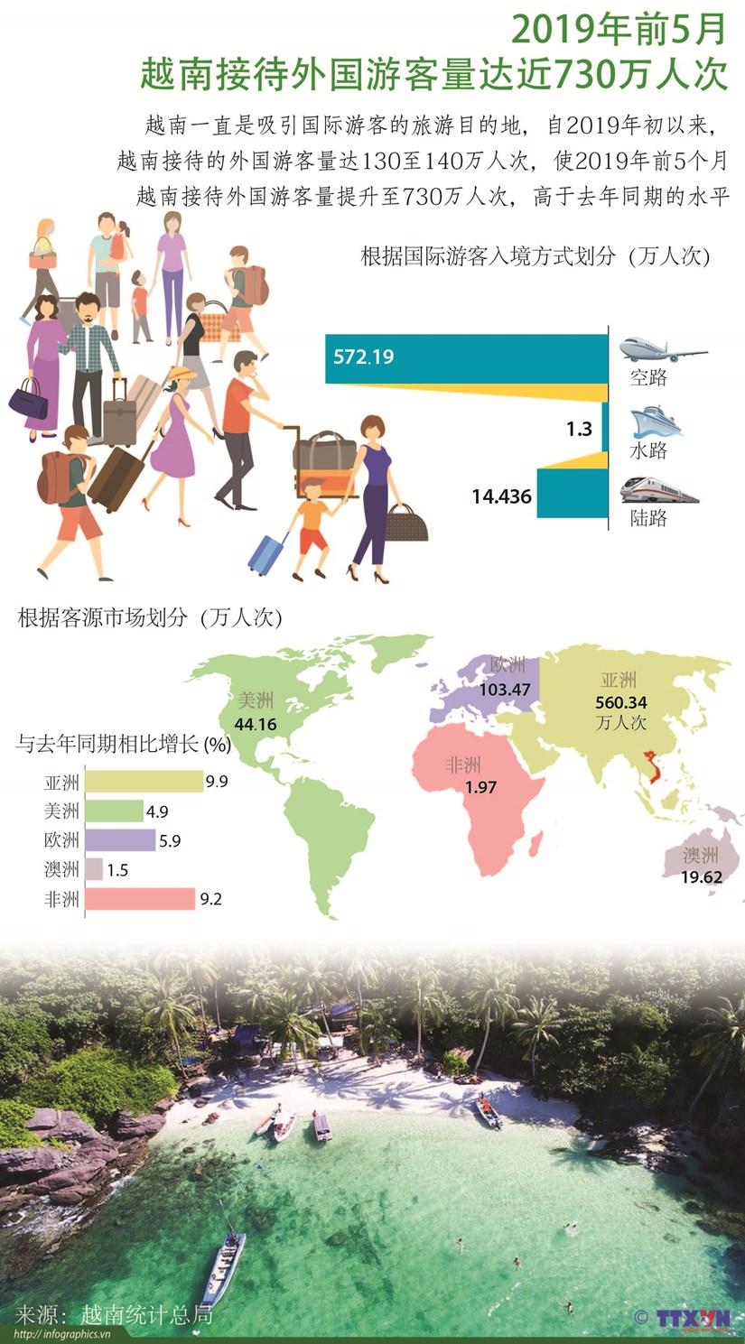 图表新闻:2019年前5月越南接待外国游客量达近730万人次 hinh anh 1