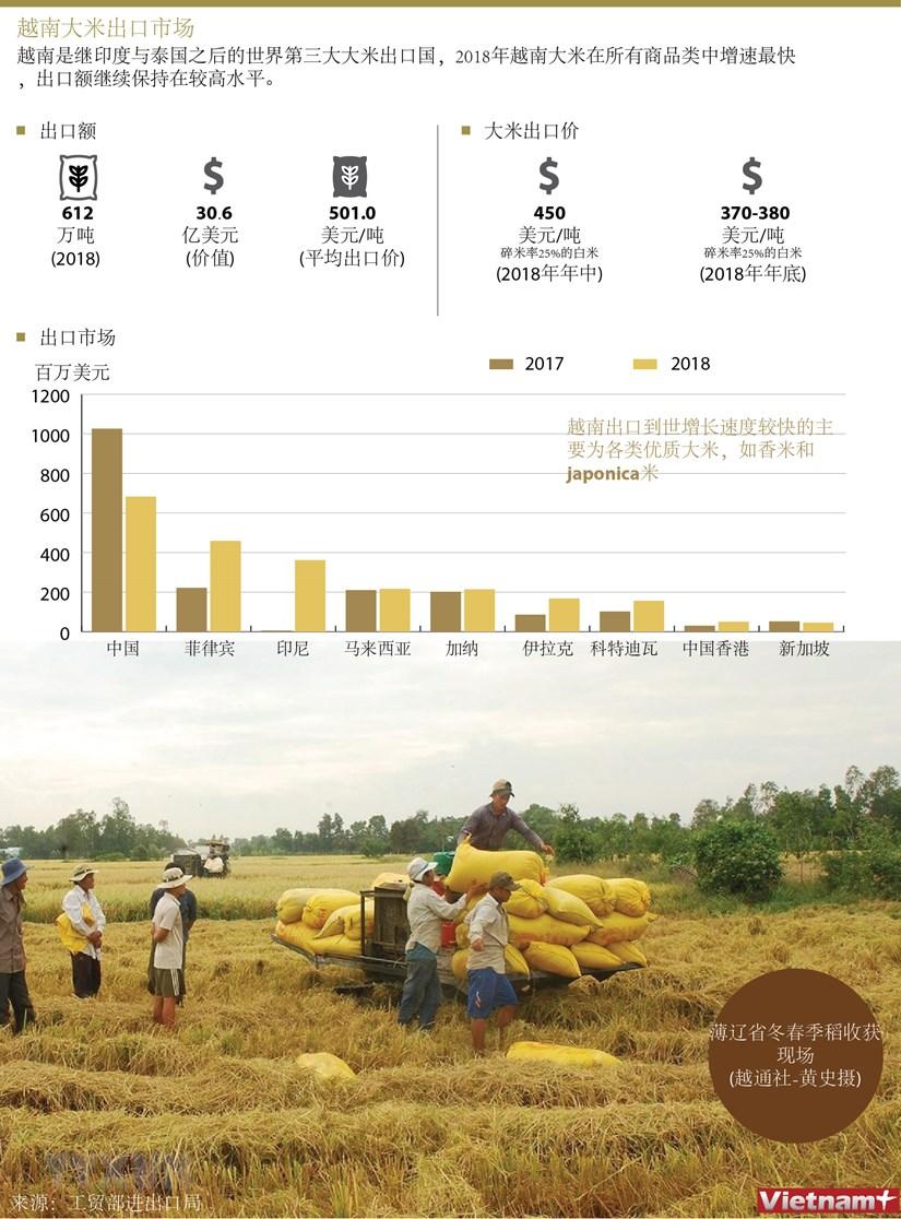 图表新闻:越南大米出口市场 hinh anh 1