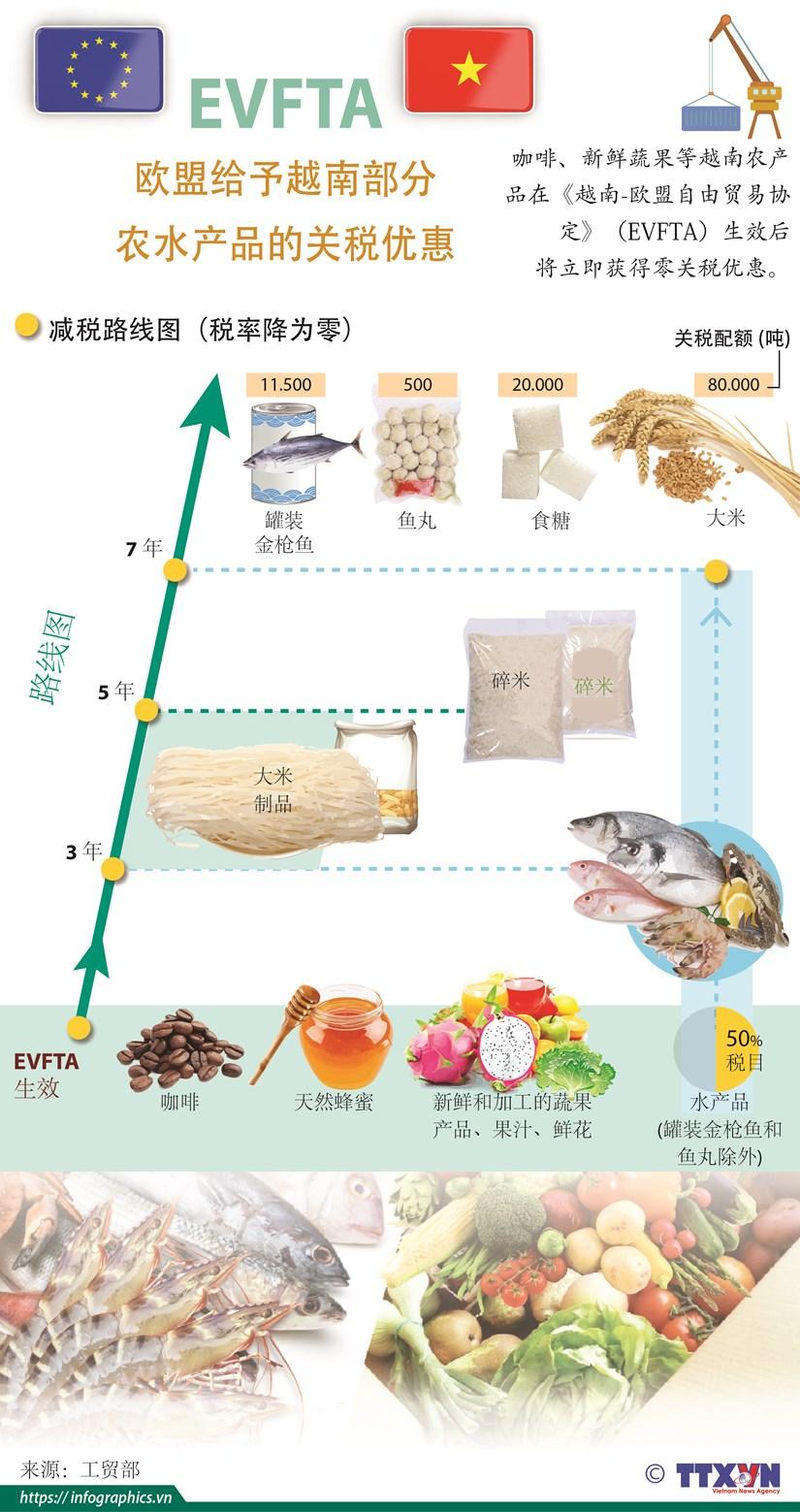 图表新闻:EVFTA--欧盟给予越南部分农水产品的关税优惠 hinh anh 1