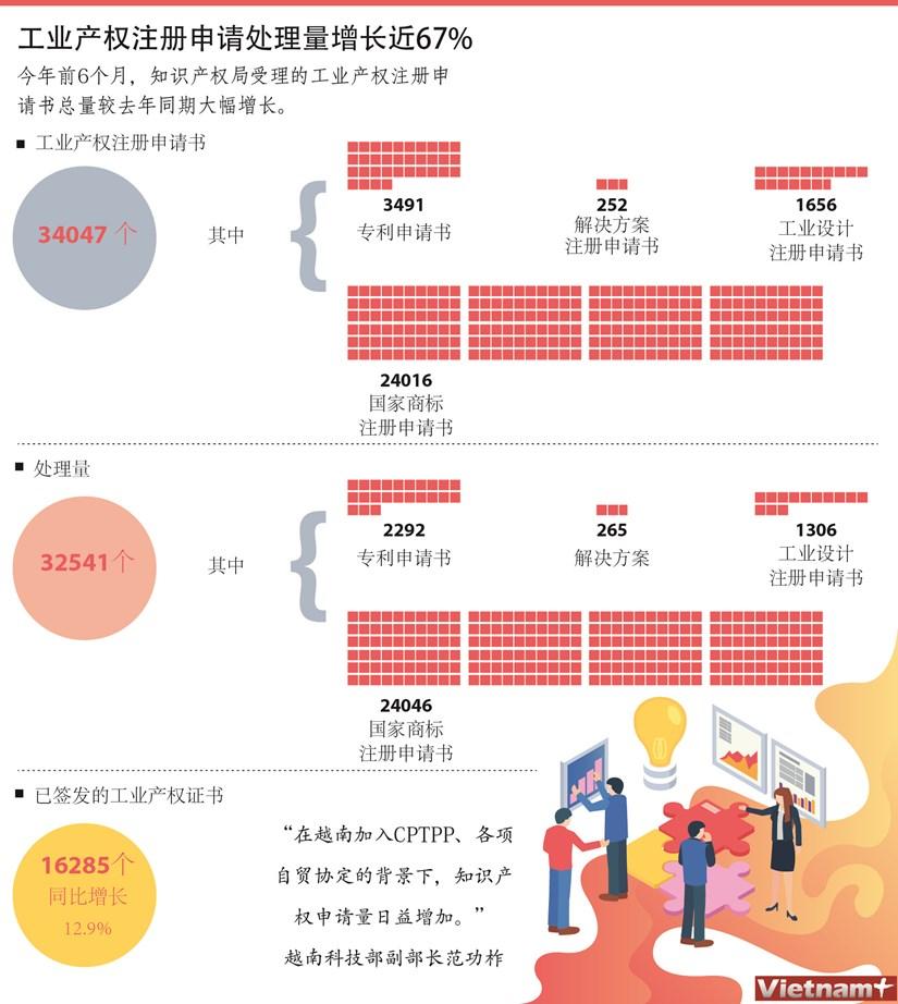图表新闻:工业产权注册申请处理量增长近67% hinh anh 1