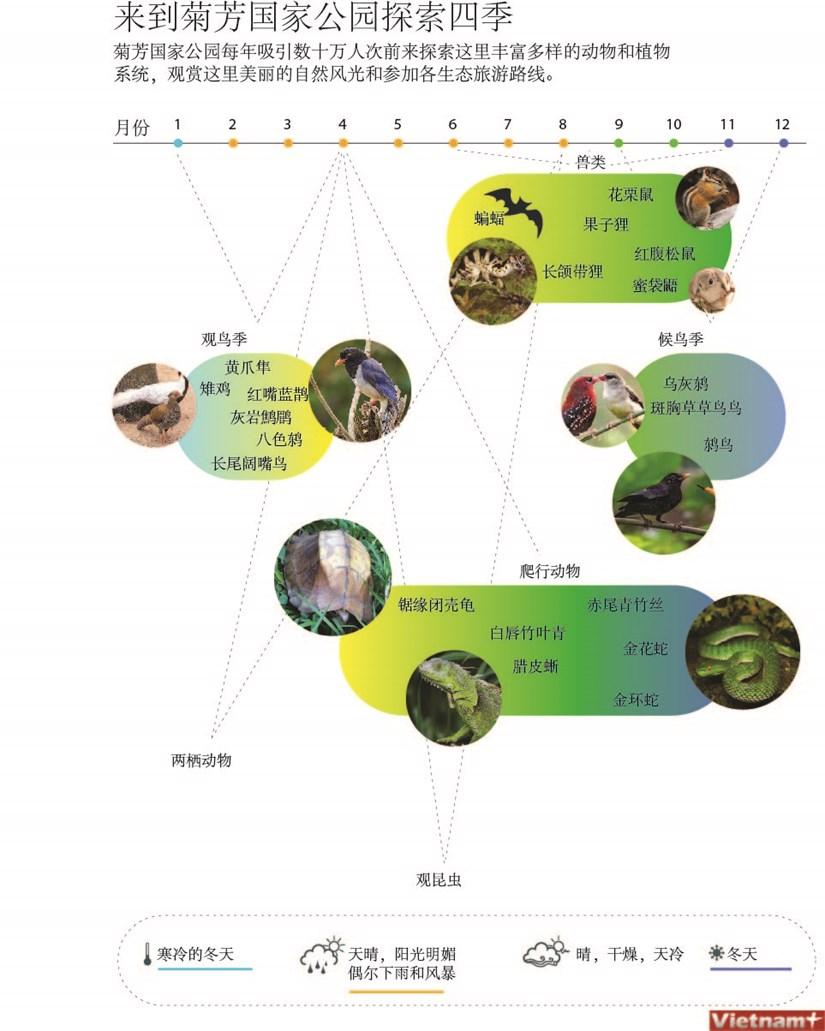图表新闻:来到菊芳国家公园探索四季 hinh anh 1