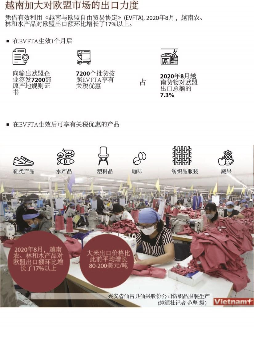 图表新闻:越南加大对欧盟市场的出口力度 hinh anh 1