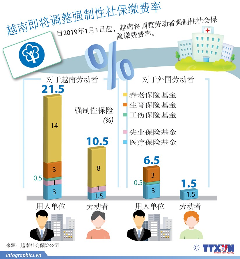 图表新闻:越南即将调整强制性社保缴费率 hinh anh 1