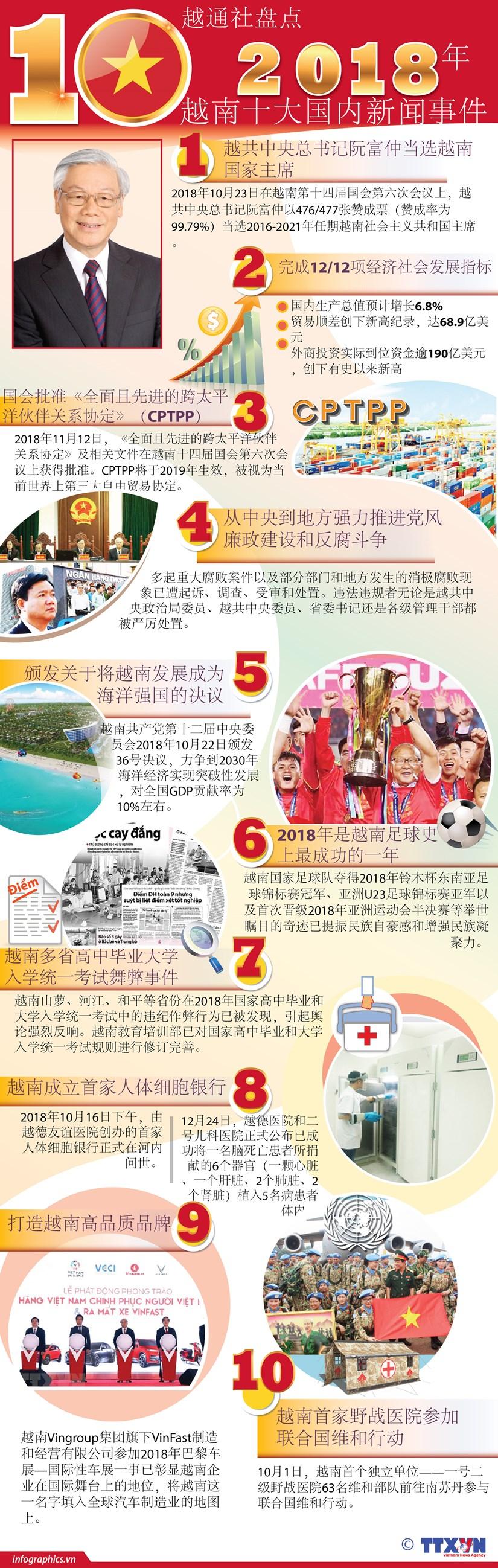 图表新闻:越通社盘点2018年越南十大国内新闻事件 hinh anh 1