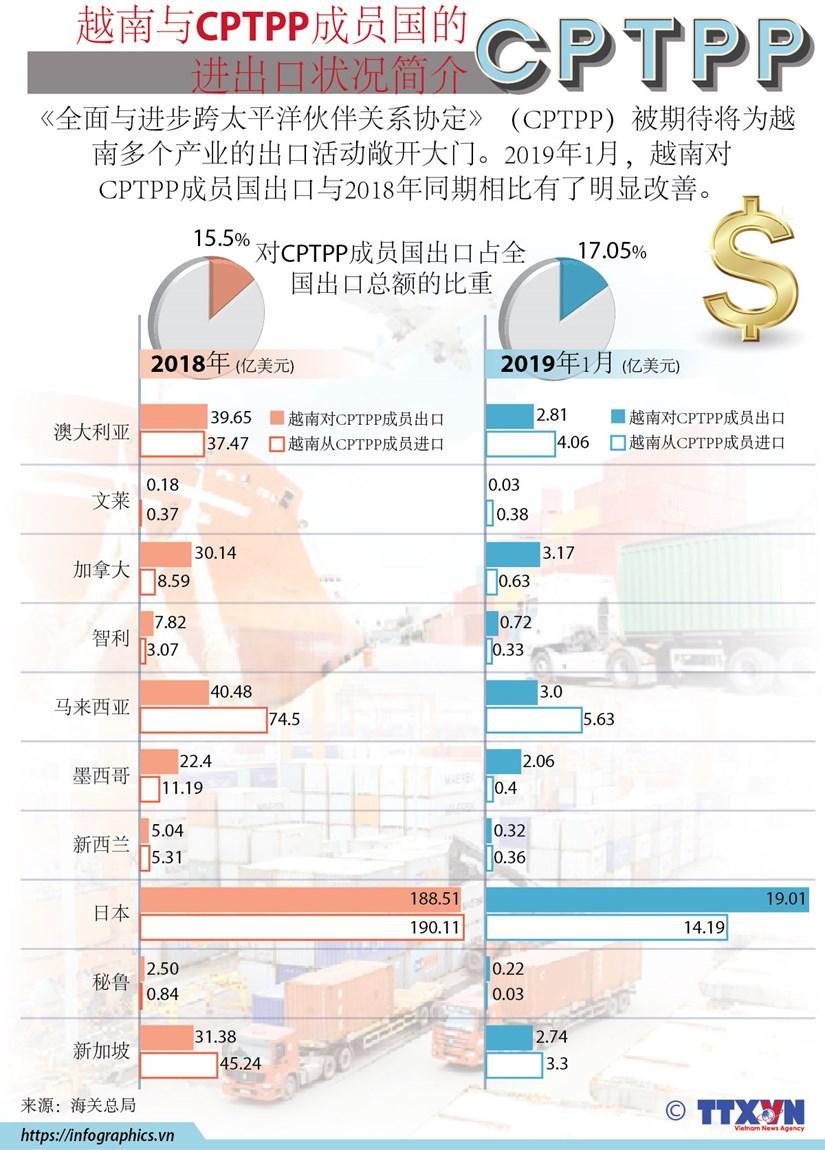 图表新闻: 越南与CPTPP成员国的进出口状况简介 hinh anh 1