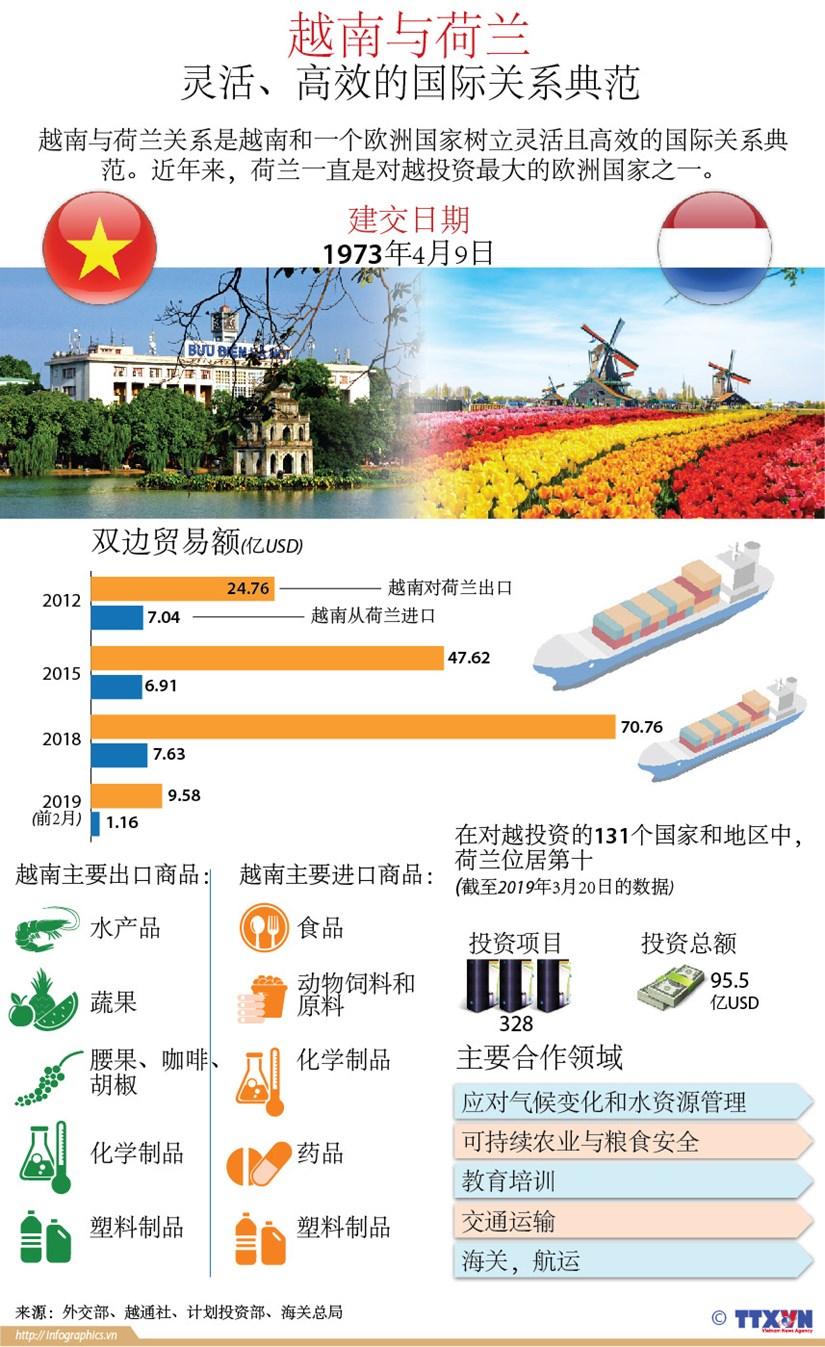 图表新闻:越南与荷兰——灵活、高效的国际关系典范 hinh anh 1