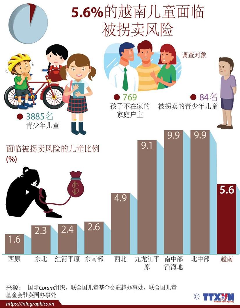 图表新闻:5.6%的越南儿童面临 被拐卖风险 hinh anh 1