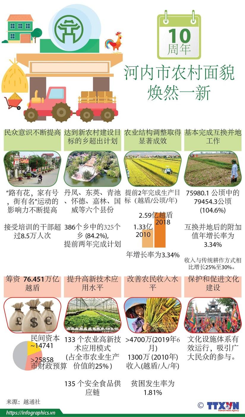 图表新闻:河内市农村面貌焕然一新 hinh anh 1