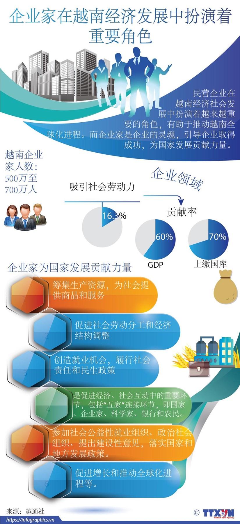 图表新闻:企业家在越南经济发展中扮演着重要角色 hinh anh 1
