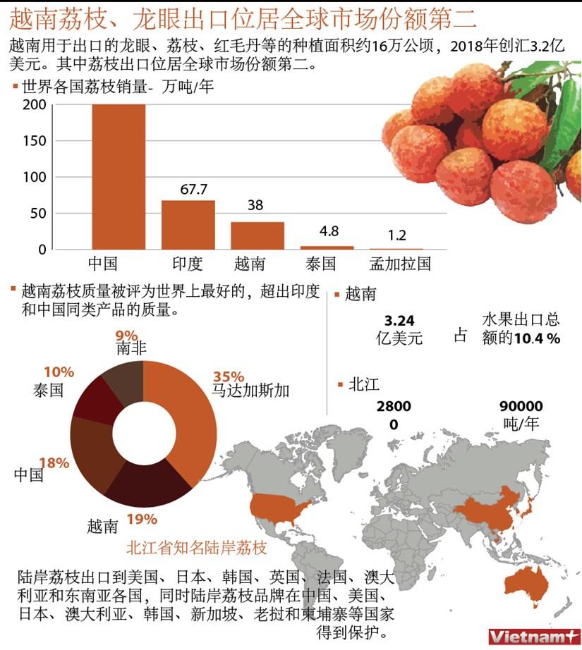 图表新闻:越南荔枝、龙眼出口位居全球市场份额第二 hinh anh 1