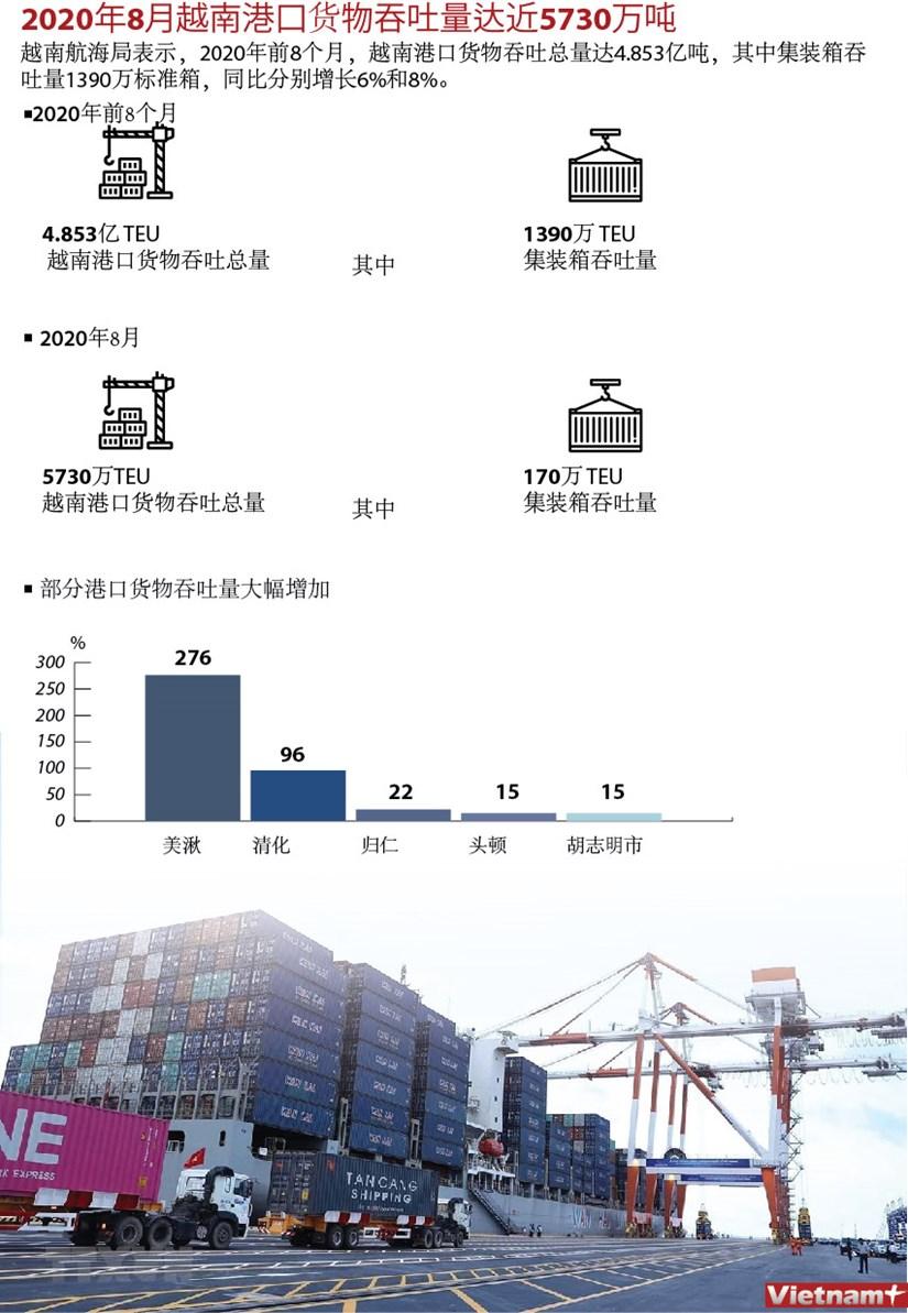 图表新闻:2020年8月越南港口货物吞吐量达近5730万吨 hinh anh 1