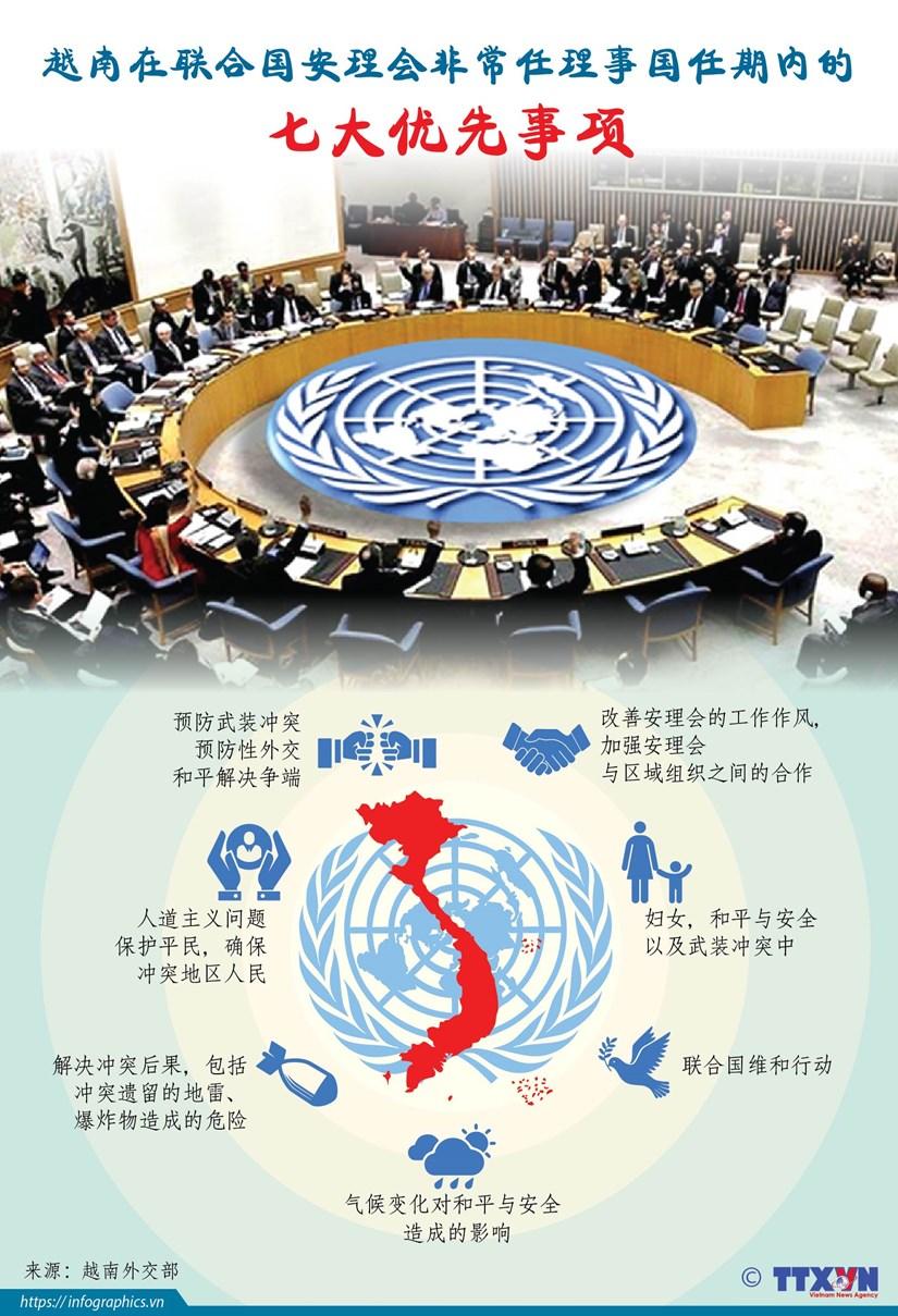 图表新闻:越南在联合国安理会非常任理事国任期内的七大优先事项 hinh anh 1