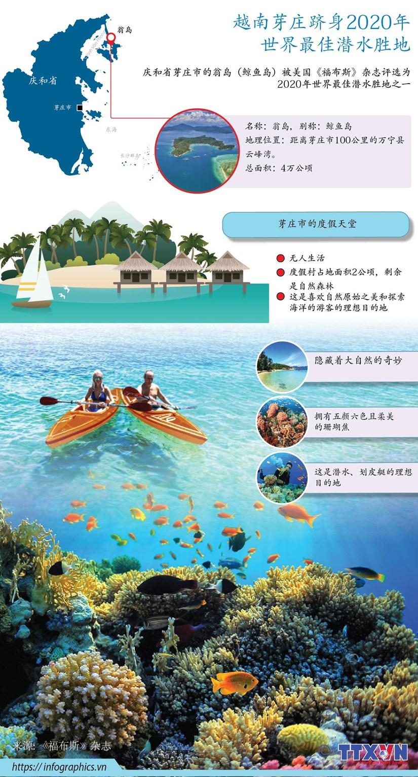 图表新闻:越南芽庄跻身2020年 世界最佳潜水胜地 hinh anh 1
