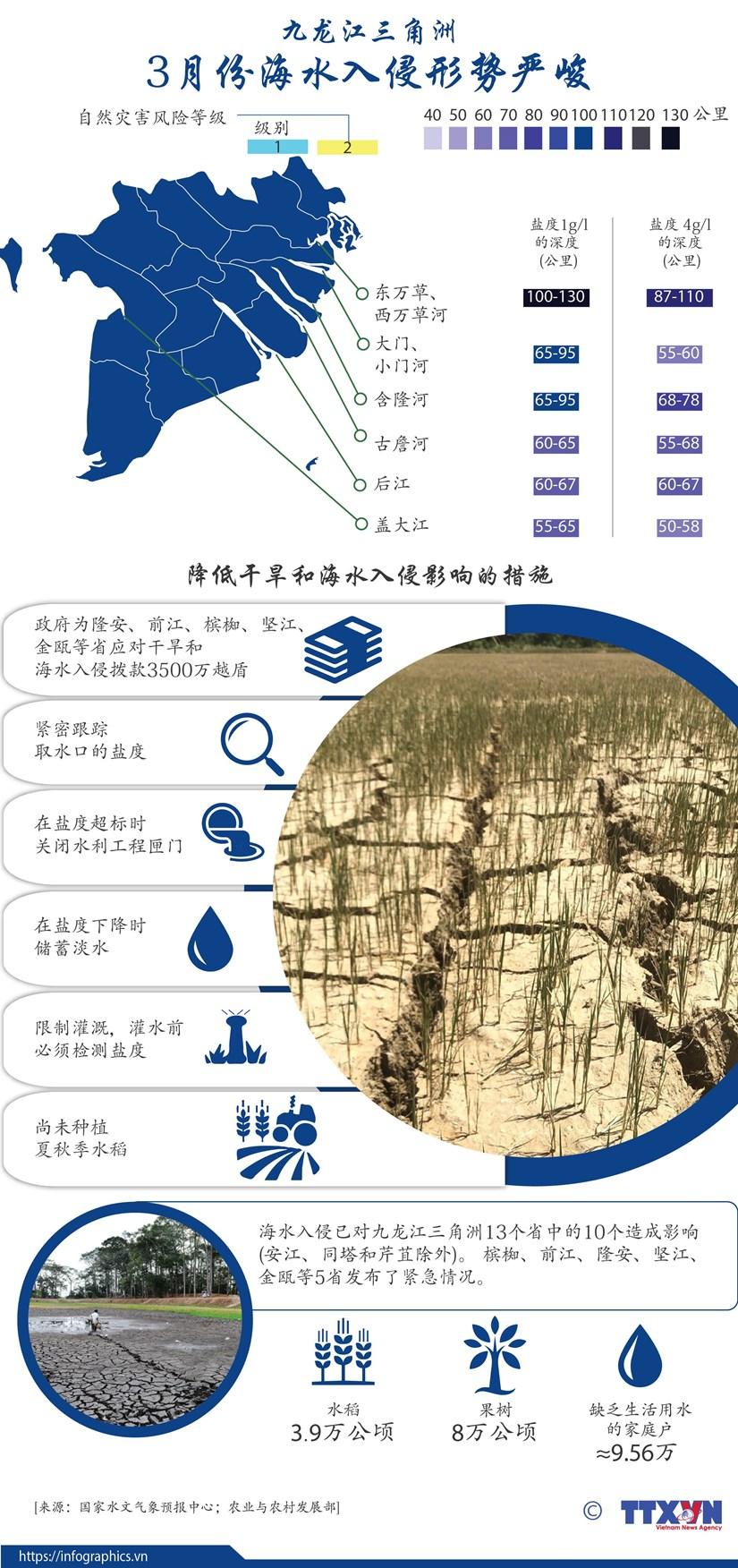 图表新闻:九龙江三角洲:3月份海水入侵形势严峻 hinh anh 1