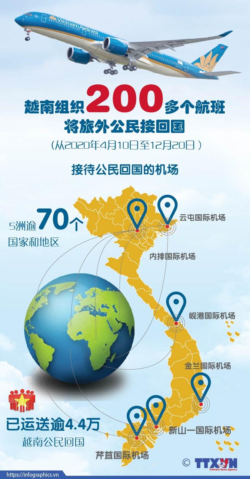图表新闻:越南组织200多个航班将旅外公民接回国 hinh anh 1