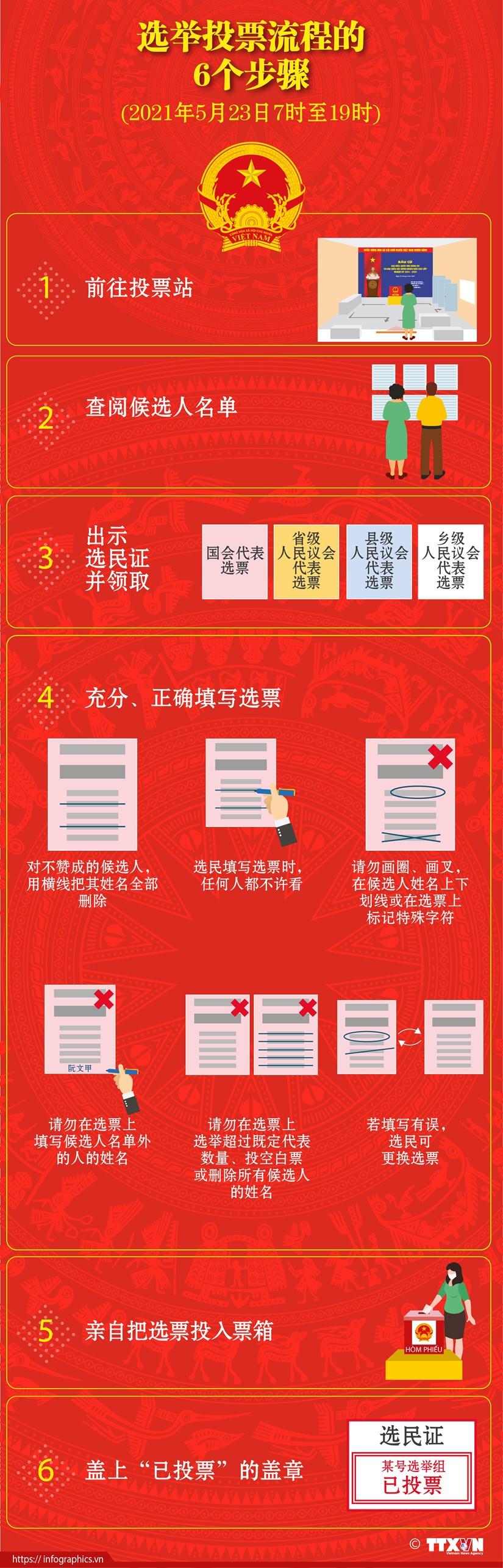 图表新闻:选举投票流程的6个步骤 hinh anh 1