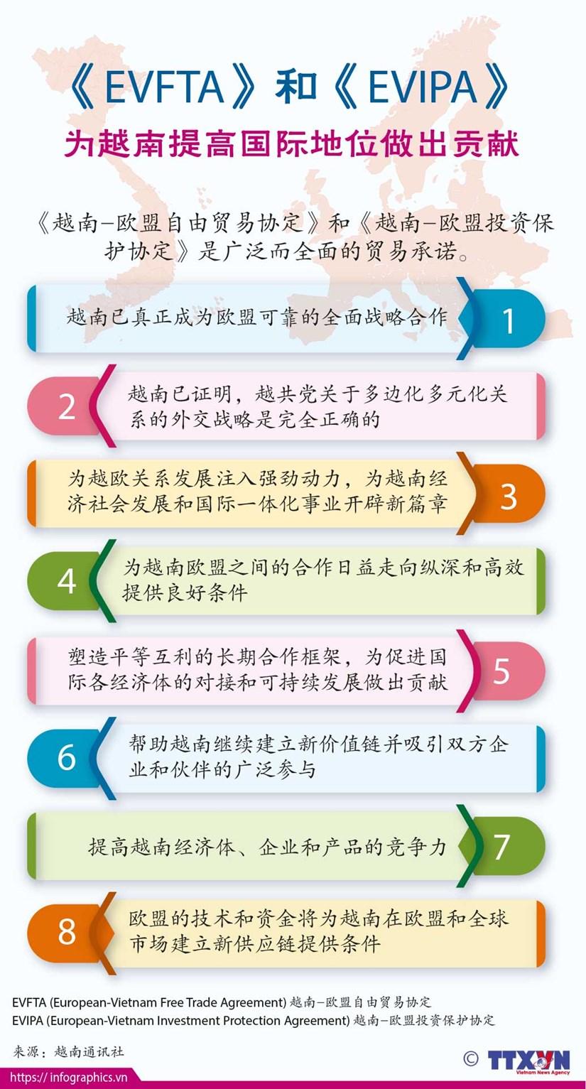 图表新闻:《EVFTA》和《EVIPA》 为越南提高国际地位做出贡献 hinh anh 1