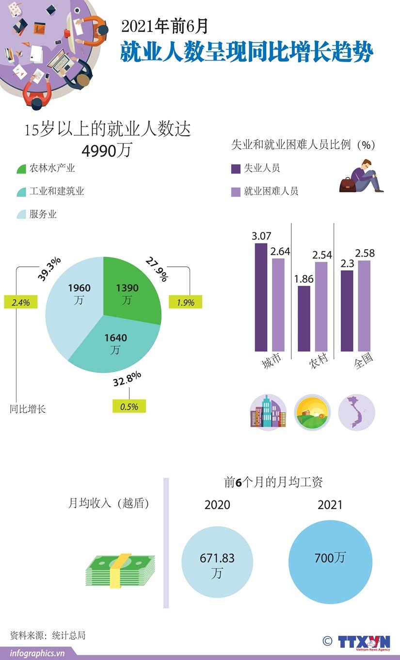 图表新闻:2021年前6月就业人数呈现同比增长趋势 hinh anh 1