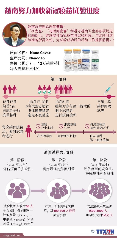 图表新闻:越南努力加快新冠疫苗试验进度 hinh anh 1